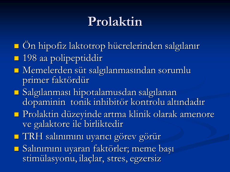 Prolaktin Ön hipofiz laktotrop hücrelerinden salgılanır Ön hipofiz laktotrop hücrelerinden salgılanır 198 aa polipeptiddir 198 aa polipeptiddir Memele