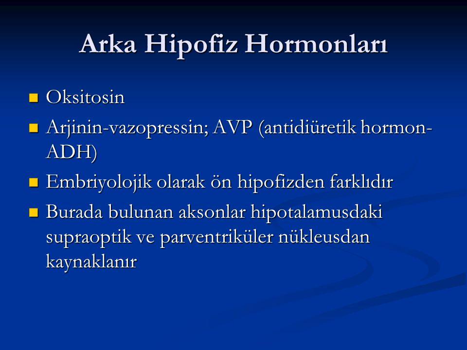 Arka Hipofiz Hormonları Oksitosin Oksitosin Arjinin-vazopressin; AVP (antidiüretik hormon- ADH) Arjinin-vazopressin; AVP (antidiüretik hormon- ADH) Em