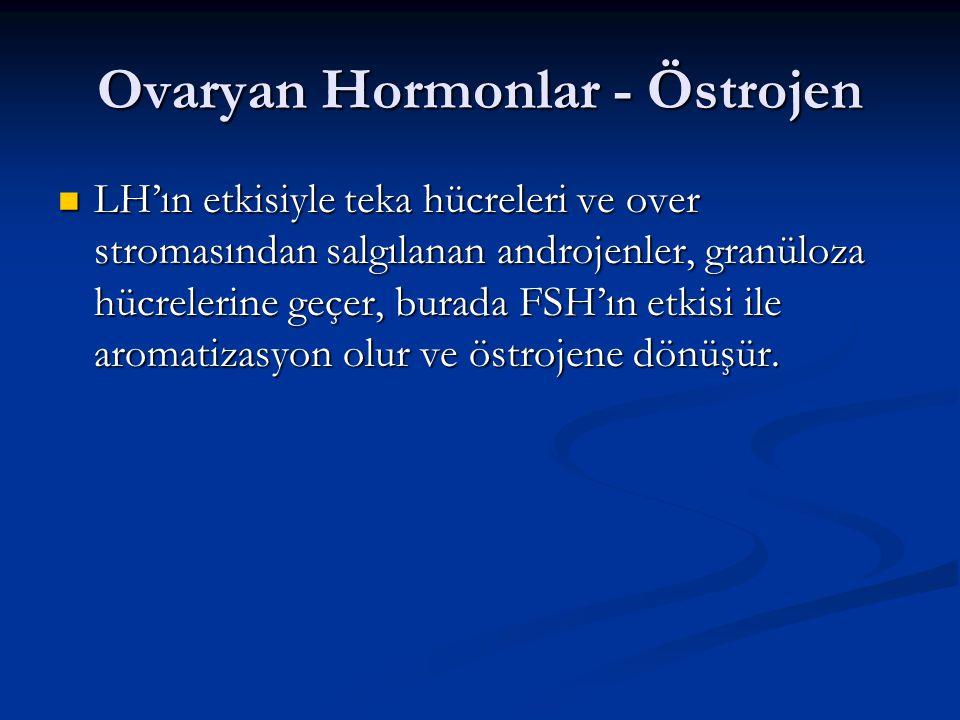 Ovaryan Hormonlar - Östrojen LH'ın etkisiyle teka hücreleri ve over stromasından salgılanan androjenler, granüloza hücrelerine geçer, burada FSH'ın et