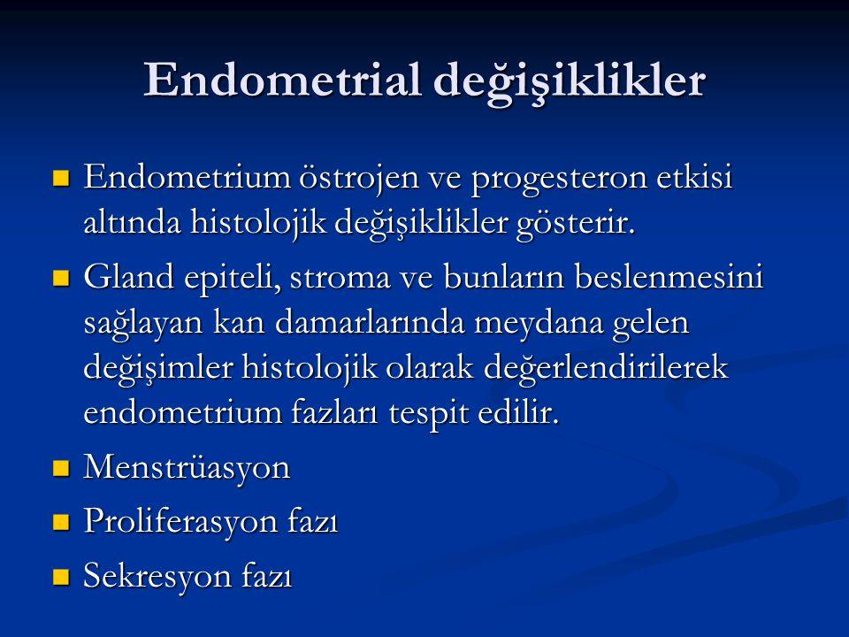Endometrial değişiklikler Endometrium östrojen ve progesteron etkisi altında histolojik değişiklikler gösterir. Endometrium östrojen ve progesteron et