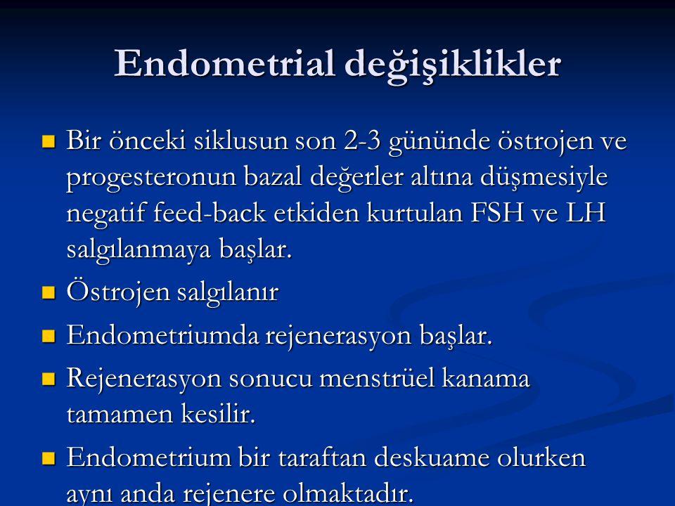 Endometrial değişiklikler Bir önceki siklusun son 2-3 gününde östrojen ve progesteronun bazal değerler altına düşmesiyle negatif feed-back etkiden kur