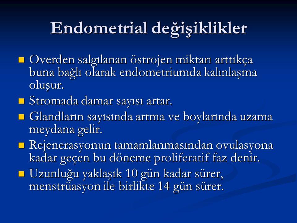 Endometrial değişiklikler Overden salgılanan östrojen miktarı arttıkça buna bağlı olarak endometriumda kalınlaşma oluşur. Overden salgılanan östrojen