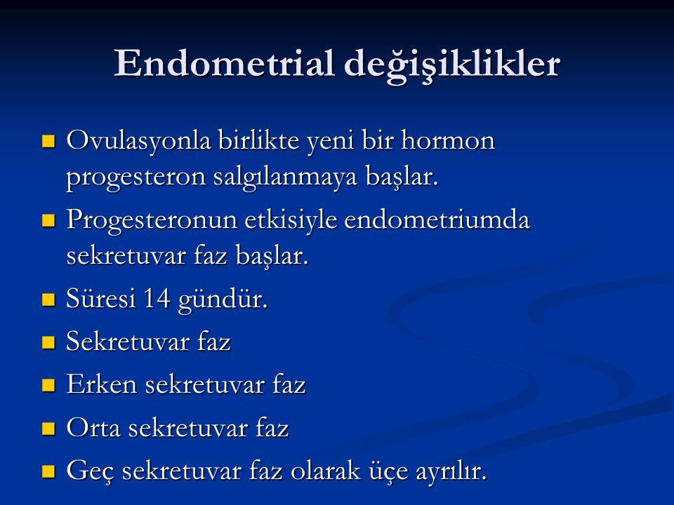 Endometrial değişiklikler Ovulasyonla birlikte yeni bir hormon progesteron salgılanmaya başlar. Ovulasyonla birlikte yeni bir hormon progesteron salgı