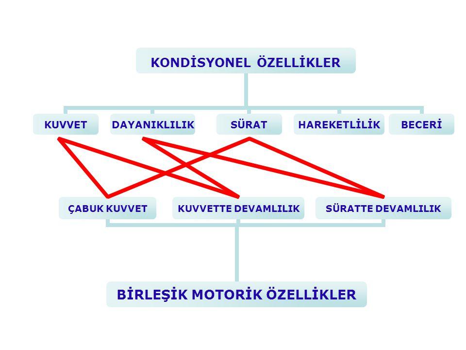  Koordinatif özelliklerin geliştirilmesi  Kuvvet özelliği koordinasyon içerisinde doğal olarak gelişir  Koordinatif özelliklerin geliştirilmesi  Kuvvet özelliği koordinasyon içerisinde doğal olarak gelişir  Önce Çabuk Kuvvet ve Kuvvette Devamlılık  Sonra Maksimal Kuvvet  Önce Çabuk Kuvvet ve Kuvvette Devamlılık  Sonra Maksimal Kuvvet Çok Yönlü Kuvvet Gelişimi 1 – Hareketliliğin azalması4 – Androjen düzeyinin hızla artması 2 – Vücut kitlesine oranla 5 – Aerobik – Anerobik güç: vital kapasitesinin azalmasıbüyümenin durmasına bağlı gelişme 3 – Östrojen düzeyinin hızla artması6 – İskeletin olgunlaşması