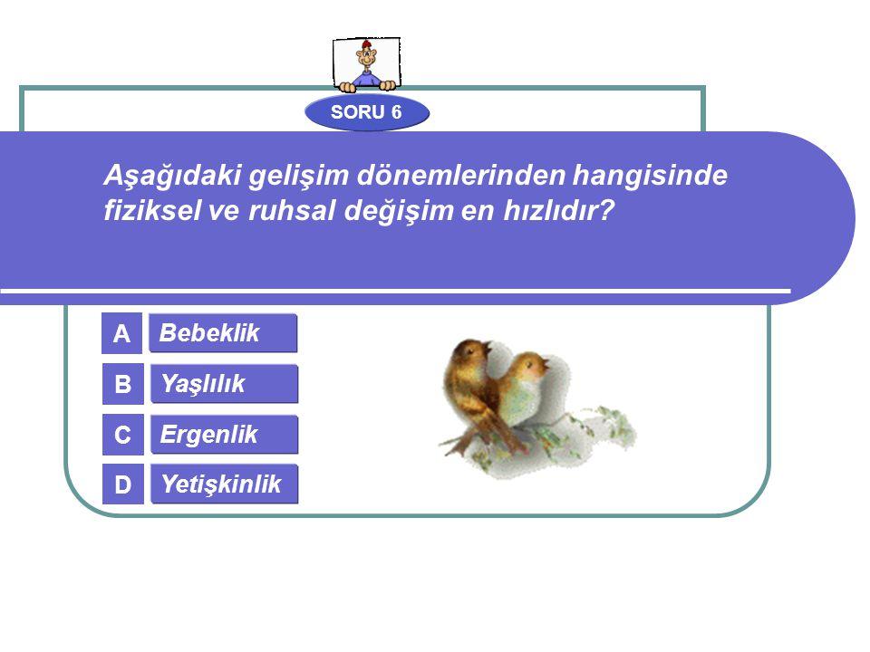 SORU 6 Bebeklik Yaşlılık Ergenlik Yetişkinlik A B C D Aşağıdaki gelişim dönemlerinden hangisinde fiziksel ve ruhsal değişim en hızlıdır?