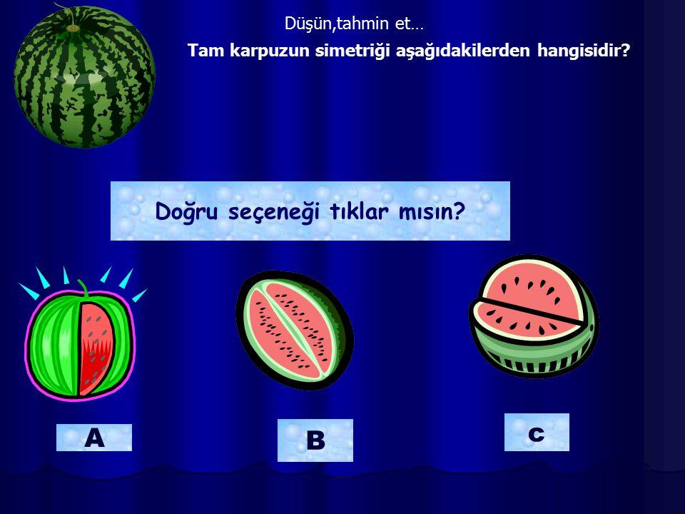 Tam karpuzun simetriği aşağıdakilerden hangisidir? B A c Doğru seçeneği tıklar mısın? Düşün,tahmin et…