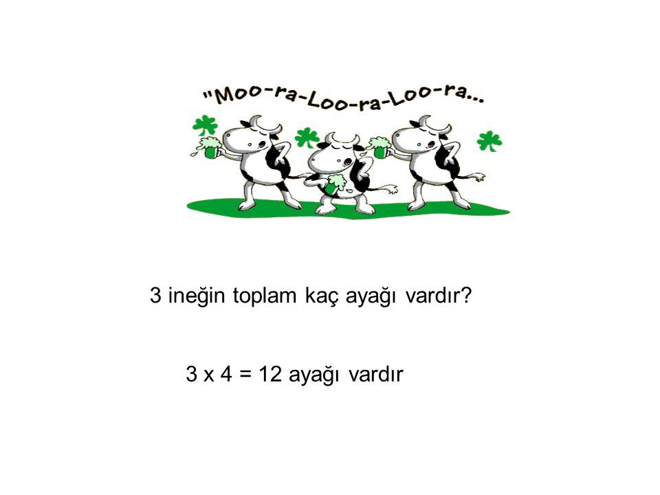 3 ineğin toplam kaç ayağı vardır? 3 x 4 = 12 ayağı vardır