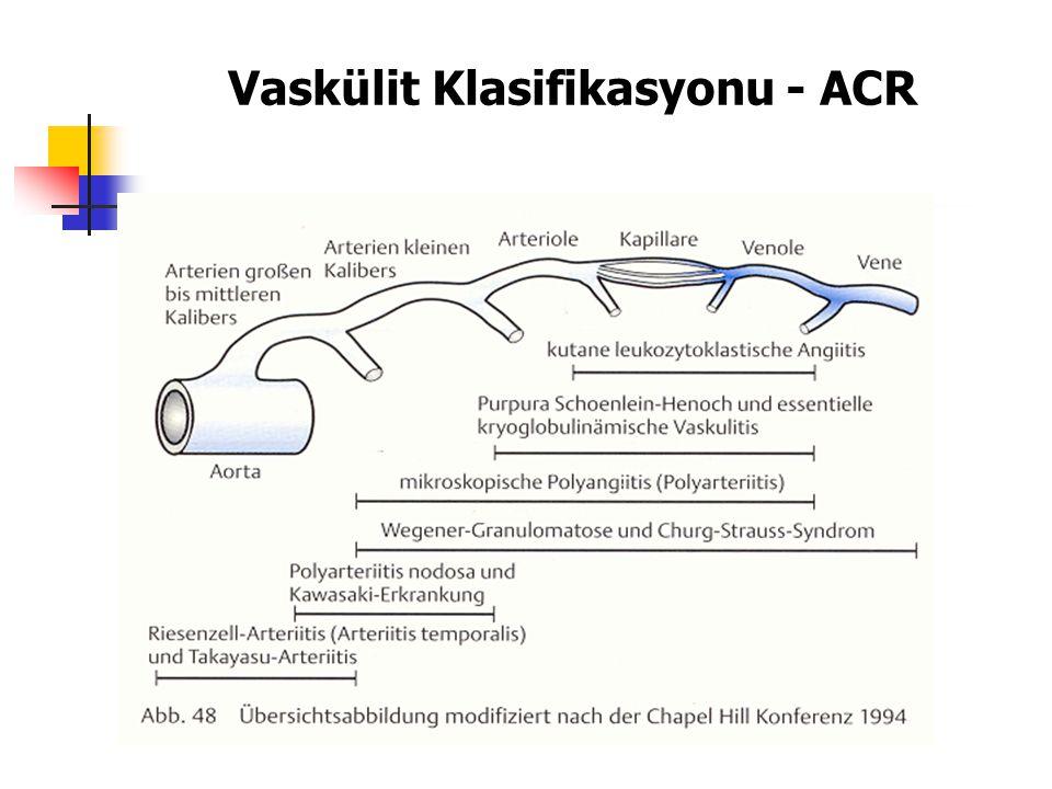 Vaskülit Klasifikasyonu - ACR