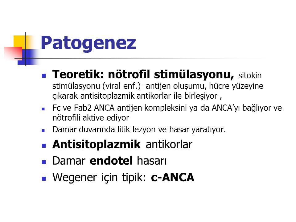 Patogenez Teoretik: nötrofil stimülasyonu, sitokin stimülasyonu (viral enf.)- antijen oluşumu, hücre yüzeyine çıkarak antisitoplazmik antikorlar ile b