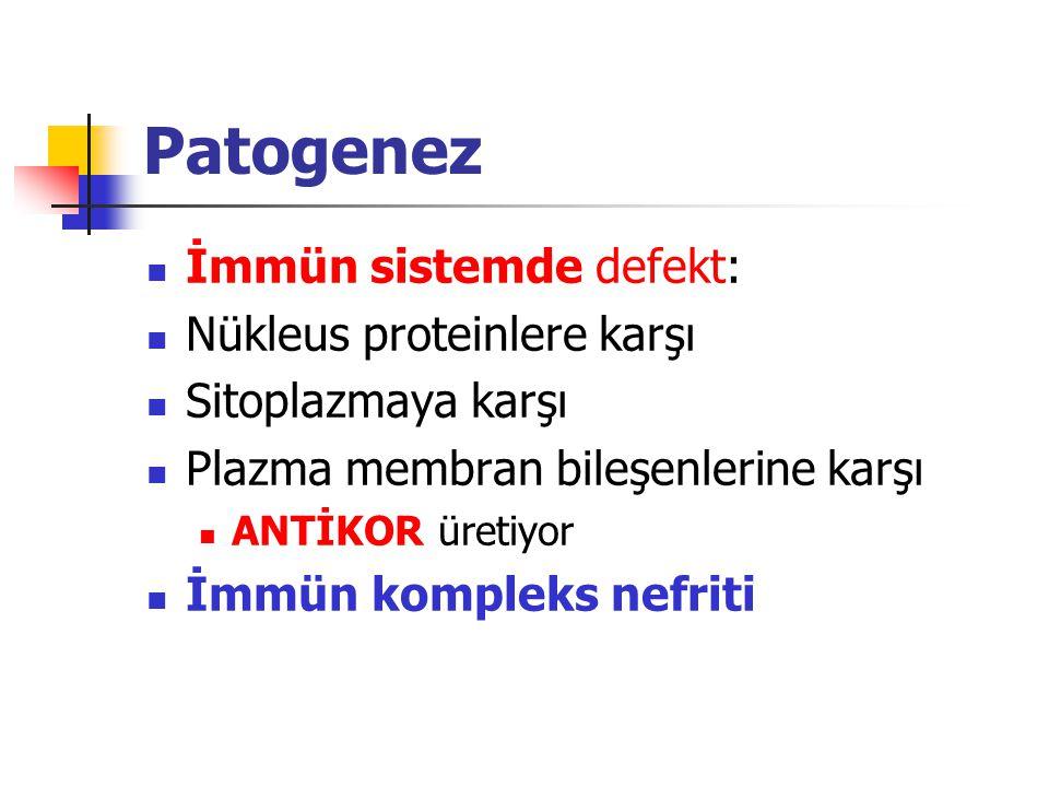 Patogenez İmmün sistemde defekt: Nükleus proteinlere karşı Sitoplazmaya karşı Plazma membran bileşenlerine karşı ANTİKOR üretiyor İmmün kompleks nefri