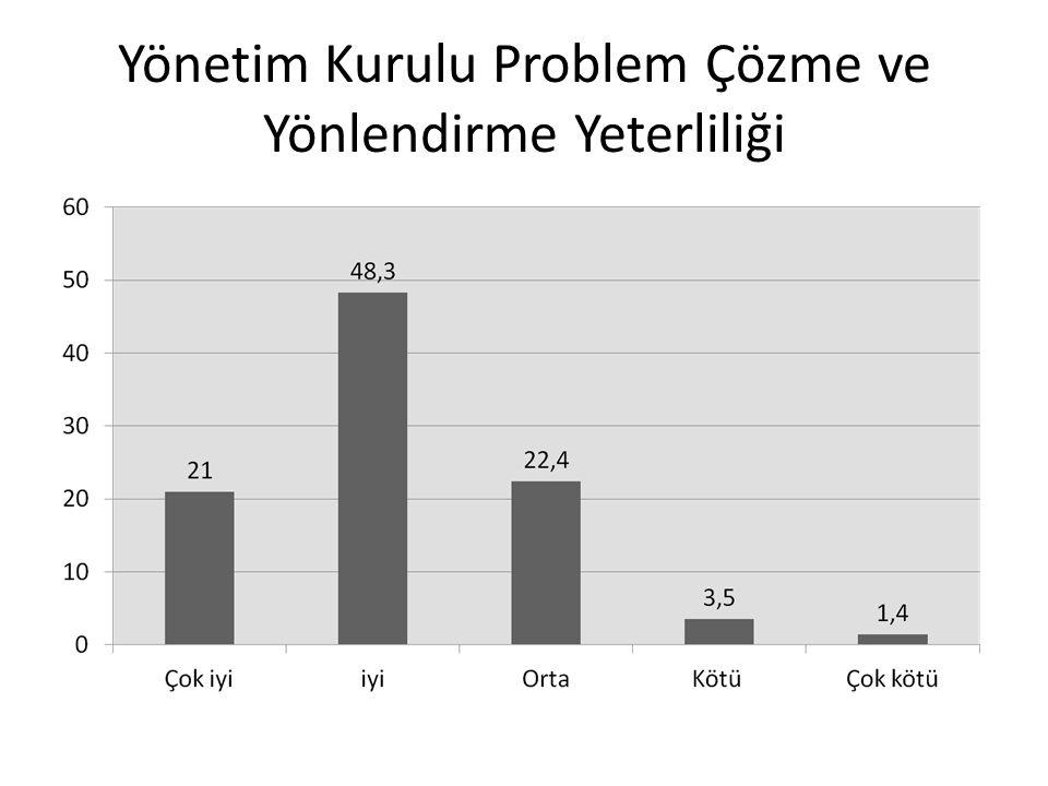 Yönetim Kurulu Problem Çözme ve Yönlendirme Yeterliliği