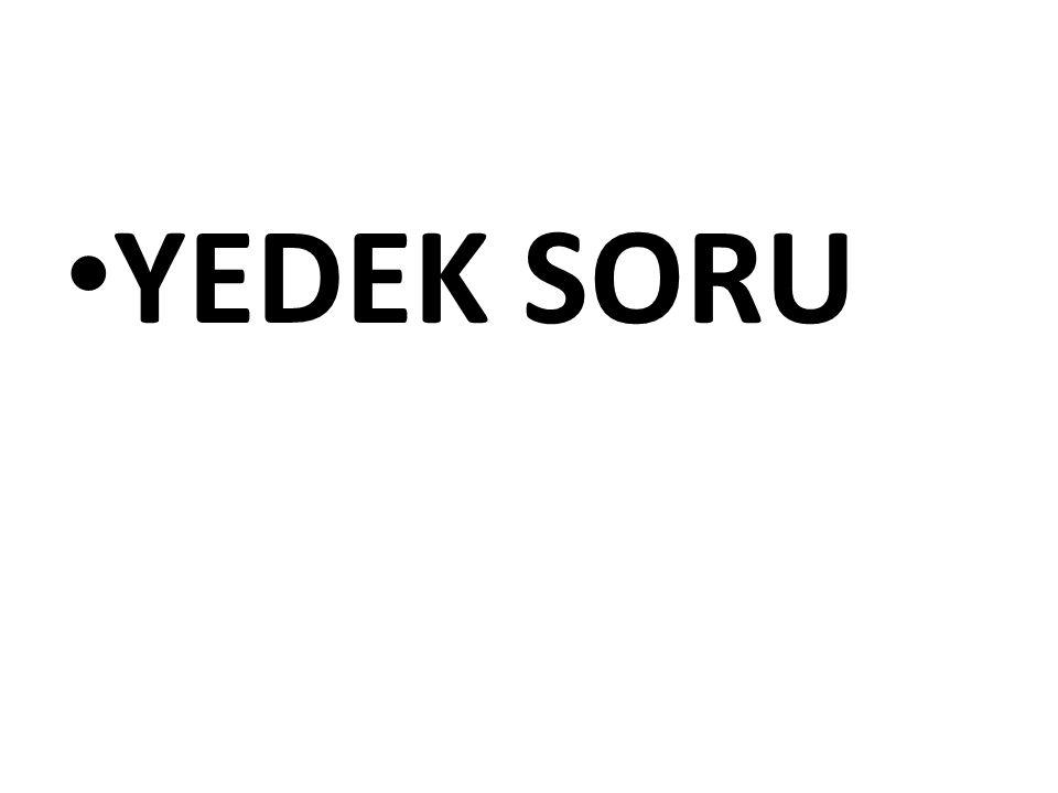 YEDEK SORU