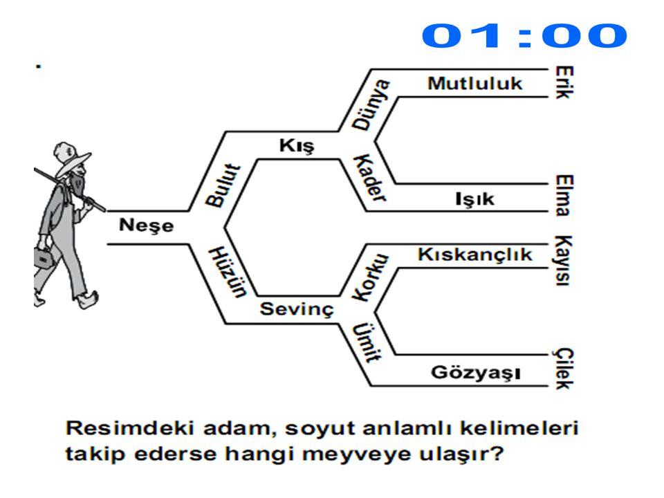 CEVAP KAYISI
