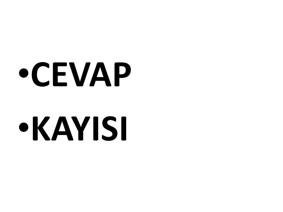 CEVAP: 15