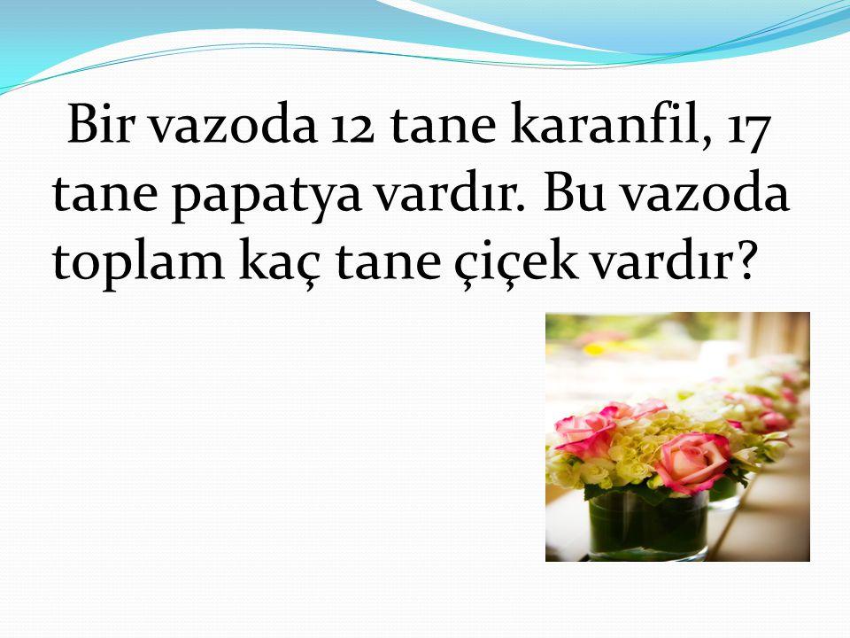 Bir vazoda 12 tane karanfil, 17 tane papatya vardır. Bu vazoda toplam kaç tane çiçek vardır?
