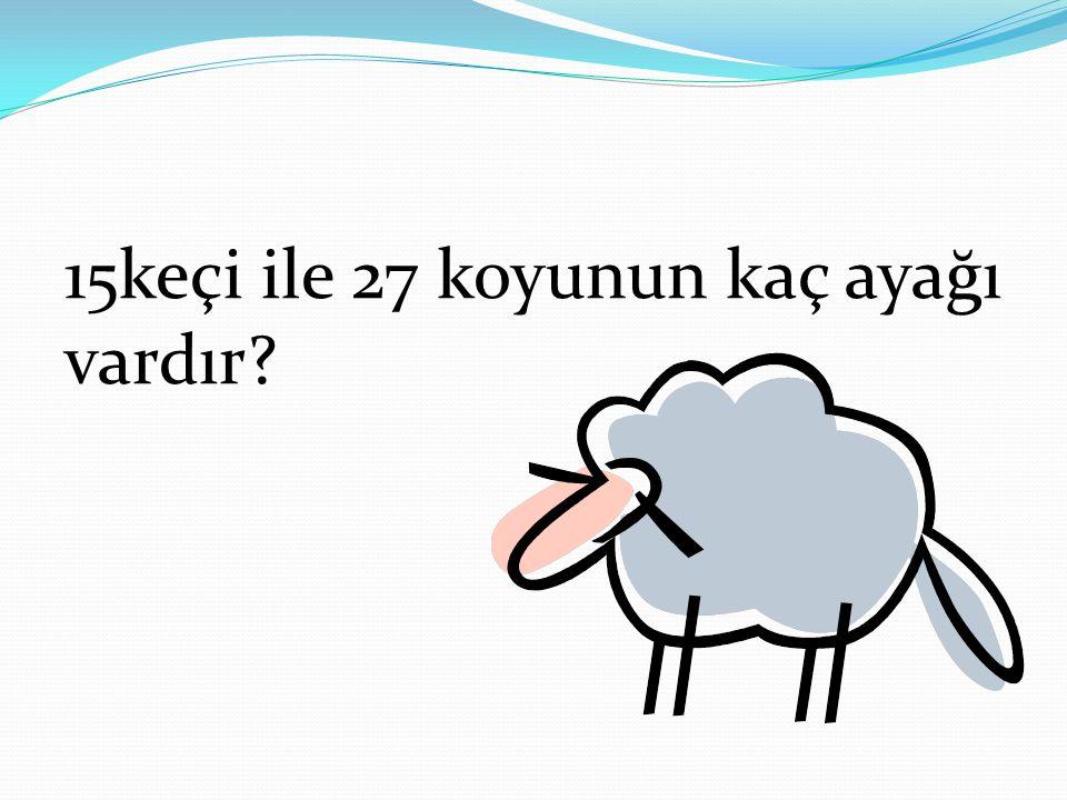 15keçi ile 27 koyunun kaç ayağı vardır?