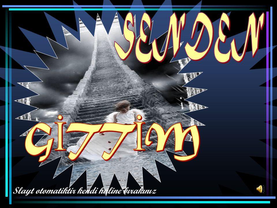 Candas62@gmail.com Slayt otomatiktir kendi haline bırakınız