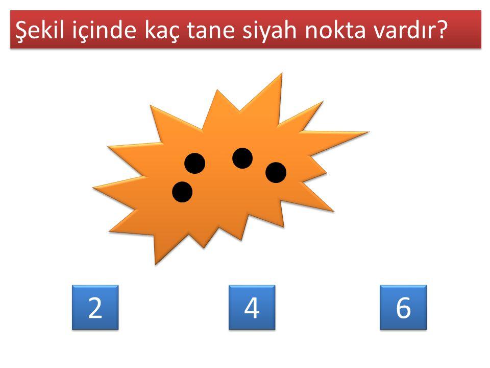 6 6 Şekil içinde kaç tane siyah nokta vardır? 2 2 4 4