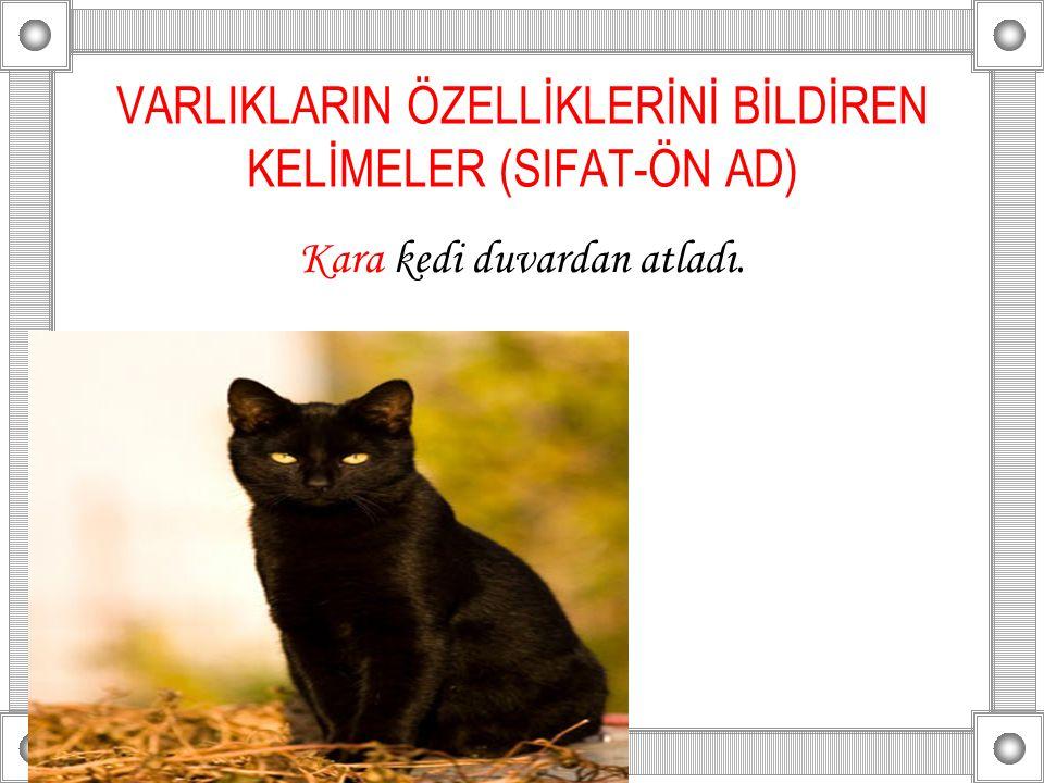 VARLIKLARIN ÖZELLİKLERİNİ BİLDİREN KELİMELER (SIFAT-ÖN AD) Kara kedi duvardan atladı.