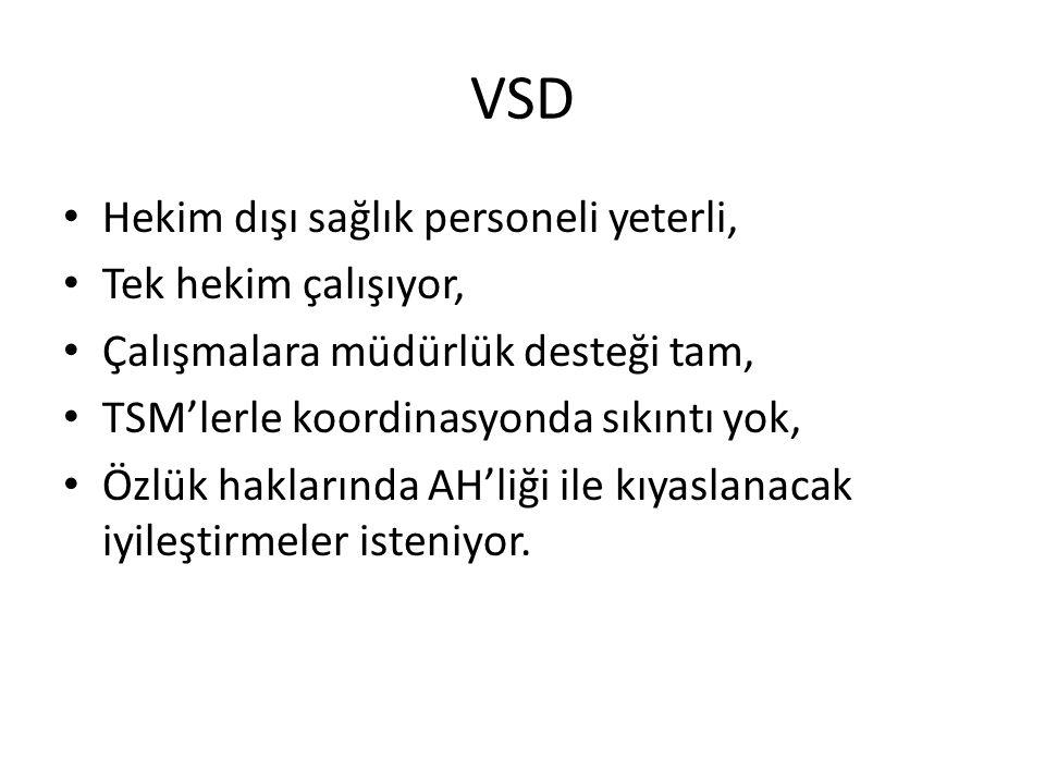 VSD Hekim dışı sağlık personeli yeterli, Tek hekim çalışıyor, Çalışmalara müdürlük desteği tam, TSM'lerle koordinasyonda sıkıntı yok, Özlük haklarında
