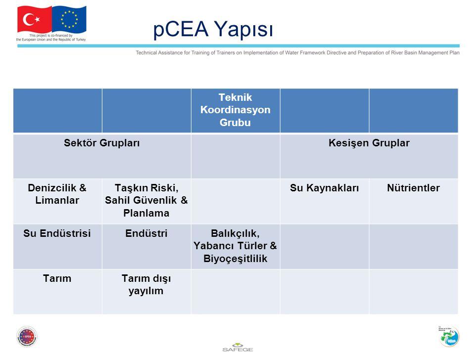 pCEA Yapısı Teknik Koordinasyon Grubu Sektör GruplarıKesişen Gruplar Denizcilik & Limanlar Taşkın Riski, Sahil Güvenlik & Planlama Su KaynaklarıNütrientler Su EndüstrisiEndüstriBalıkçılık, Yabancı Türler & Biyoçeşitlilik TarımTarım dışı yayılım