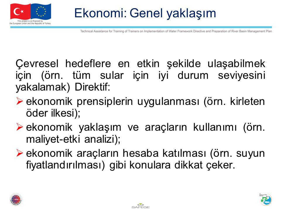 Ekonomi: Genel yaklaşım Çevresel hedeflere en etkin şekilde ulaşabilmek için (örn.