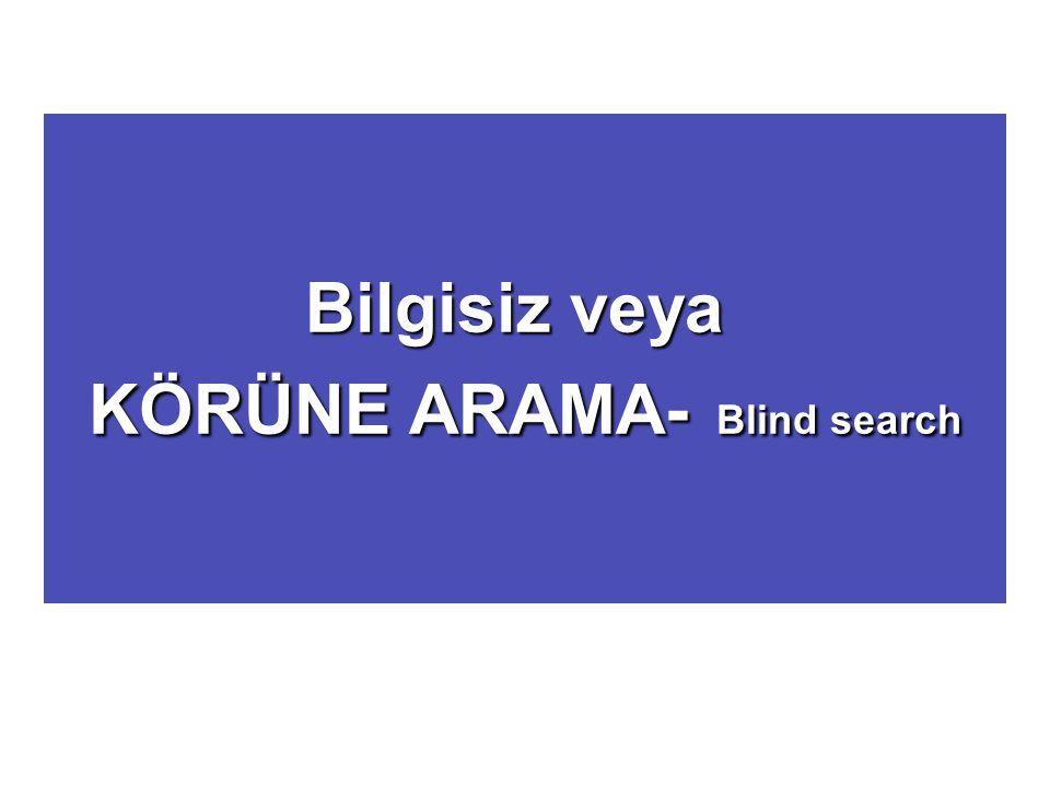 Bilgisiz veya KÖRÜNE ARAMA- Blind search