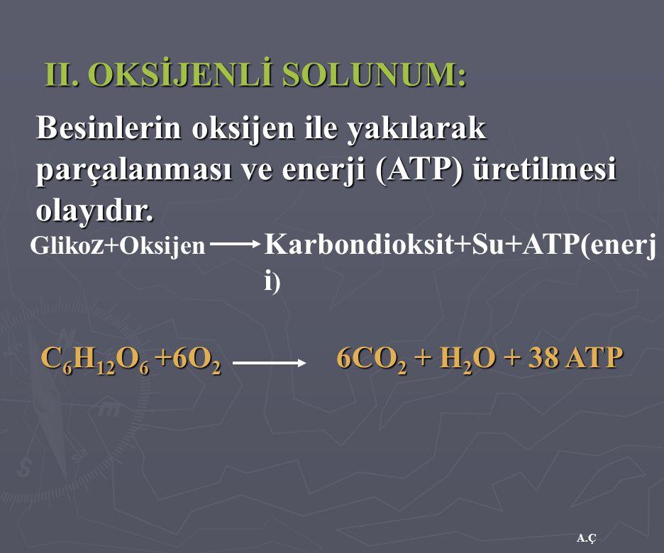 A.Ç II. OKSİJENLİ SOLUNUM: Besinlerin oksijen ile yakılarak parçalanması ve enerji (ATP) üretilmesi olayıdır. Gliko z +Oksijen Karbondioksit+Su+ATP(en
