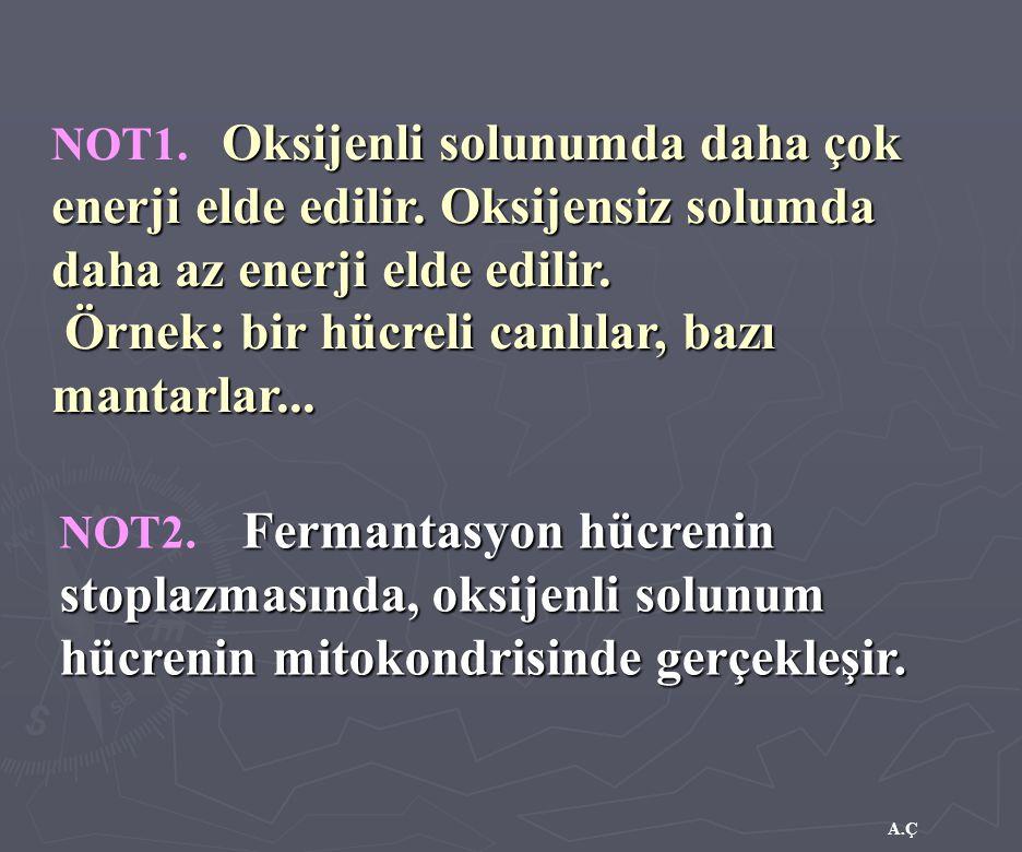 A.Ç Oksijenli solunumda daha çok enerji elde edilir. Oksijensiz solumda daha az enerji elde edilir. NOT1. Oksijenli solunumda daha çok enerji elde edi