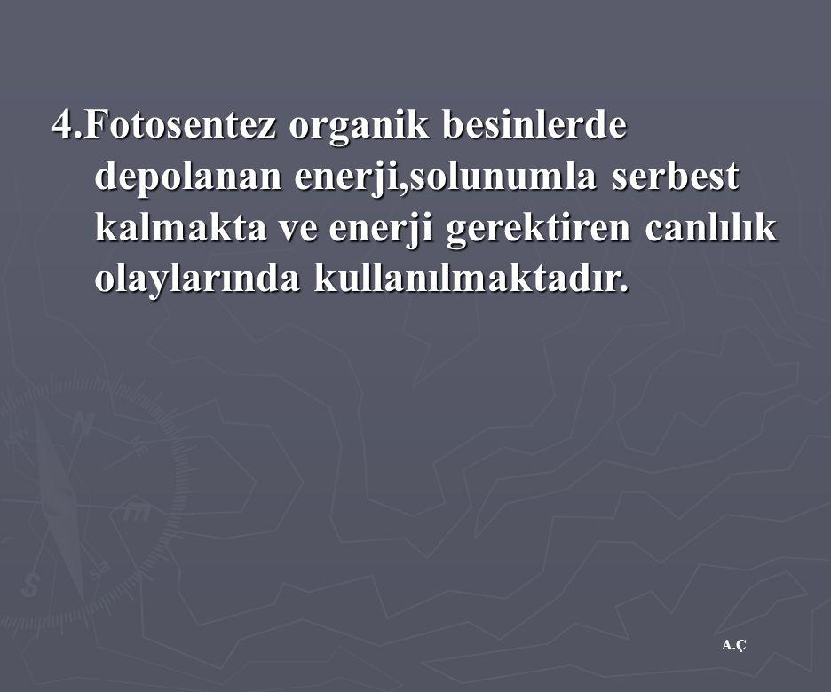 A.Ç 4.Fotosentez organik besinlerde depolanan enerji,solunumla serbest kalmakta ve enerji gerektiren canlılık olaylarında kullanılmaktadır.