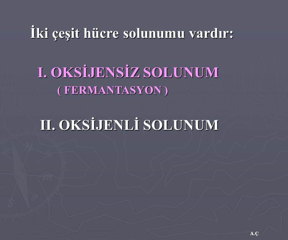 A.Ç I. OKSİJENSİZ SOLUNUM İki çeşit hücre solunumu vardır: II. OKSİJENLİ SOLUNUM (FERMANTASYON ) ( FERMANTASYON )