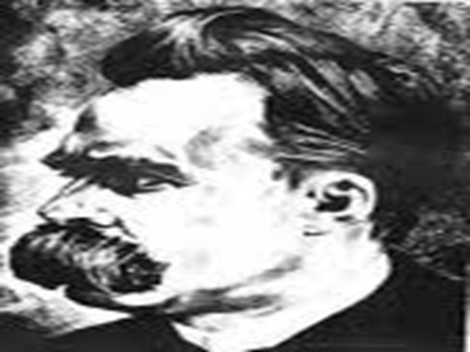 Nietzsche 1889'un başlarında sokakta yürürken birden yere düştü. Uzmanlara göre bunun sebebi