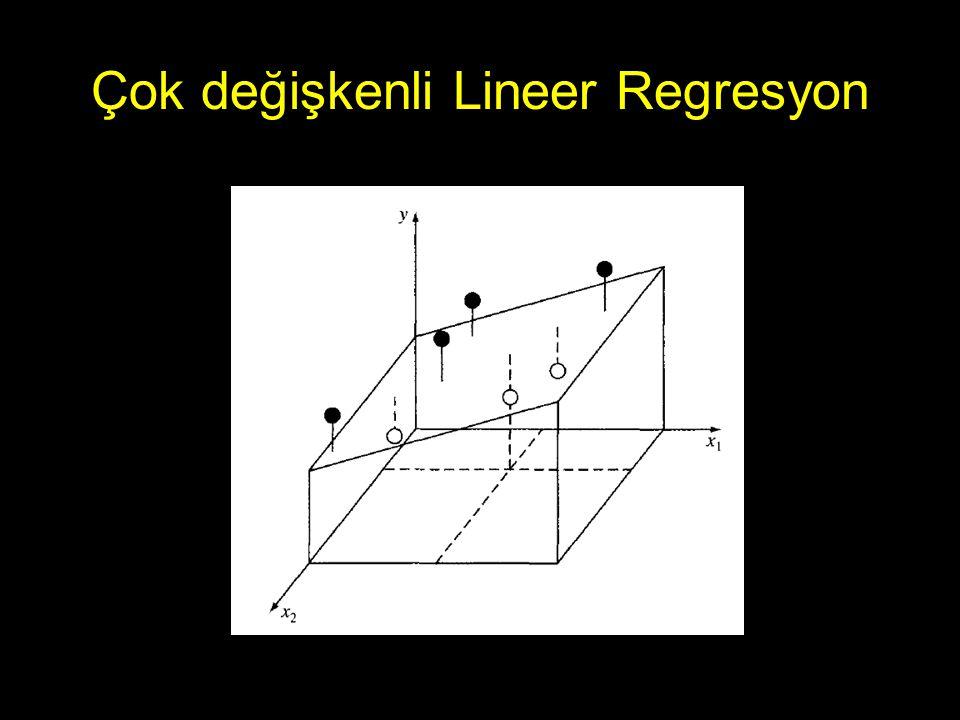 Çok değişkenli Lineer Regresyon