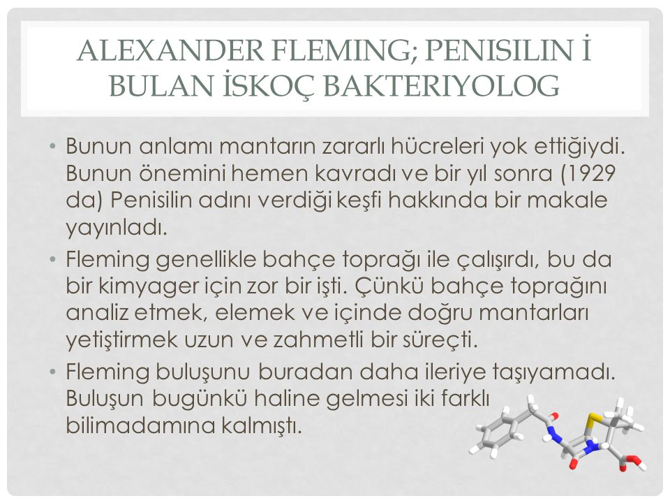 ALEXANDER FLEMING; PENISILIN İ BULAN İSKOÇ BAKTERIYOLOG Bunun anlamı mantarın zararlı hücreleri yok ettiğiydi. Bunun önemini hemen kavradı ve bir yıl