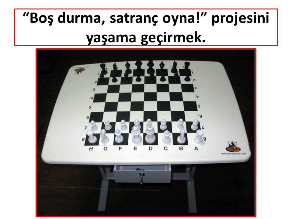 """Boş durma, satranç oyna!"" projesini yaşama geçirmek."