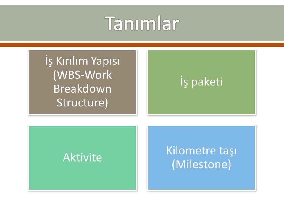 İş Kırılım Yapısı (WBS-Work Breakdown Structure) İş paketi Aktivite Kilometre taşı (Milestone)