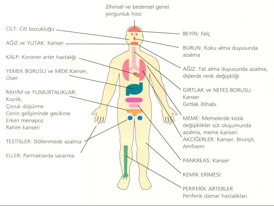 Sigara içenlerde öksürük, balgam çıkarma ve nefes darlığı görülmektedir.