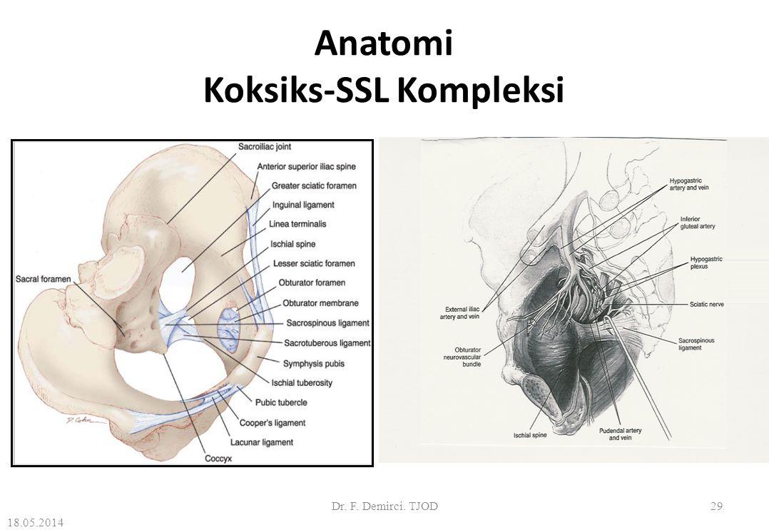 Sakrospinöz Ligament Süspansiyonu: Prosedür Önce spina iskiadikalar ve sakrospinöz ligamentlerin yeri tanımlanır.