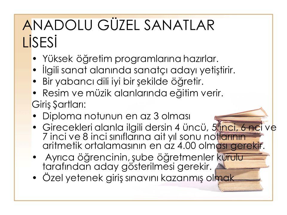 ANADOLU GÜZEL SANATLAR LİSESİ Yüksek öğretim programlarına hazırlar.