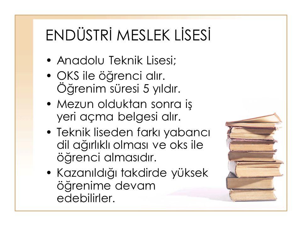 ENDÜSTRİ MESLEK LİSESİ Anadolu Teknik Lisesi; OKS ile öğrenci alır.