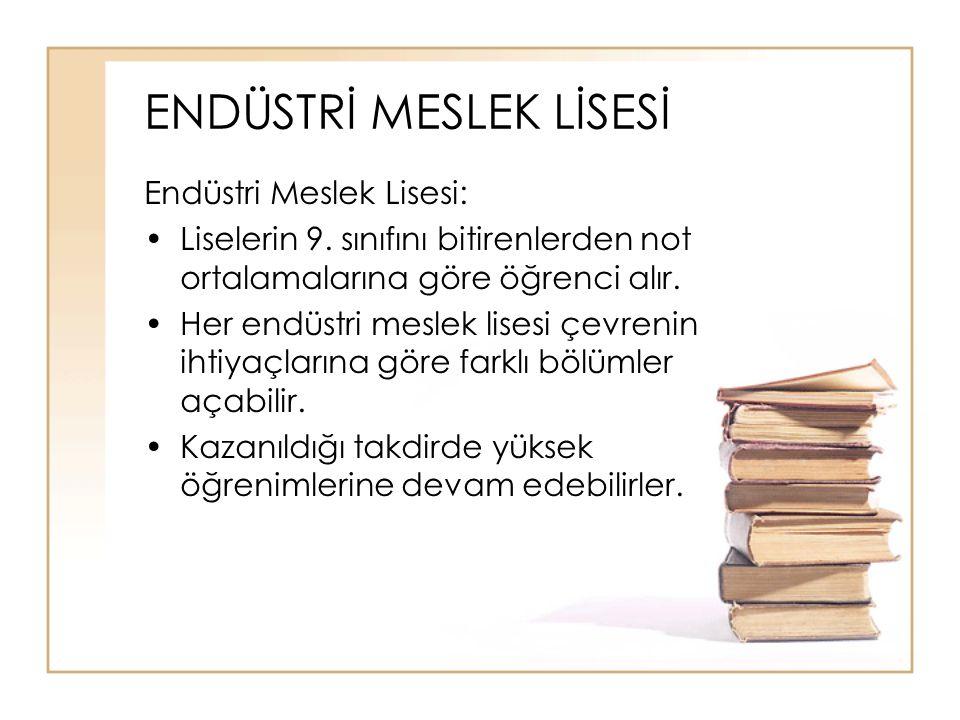ENDÜSTRİ MESLEK LİSESİ Endüstri Meslek Lisesi: Liselerin 9.
