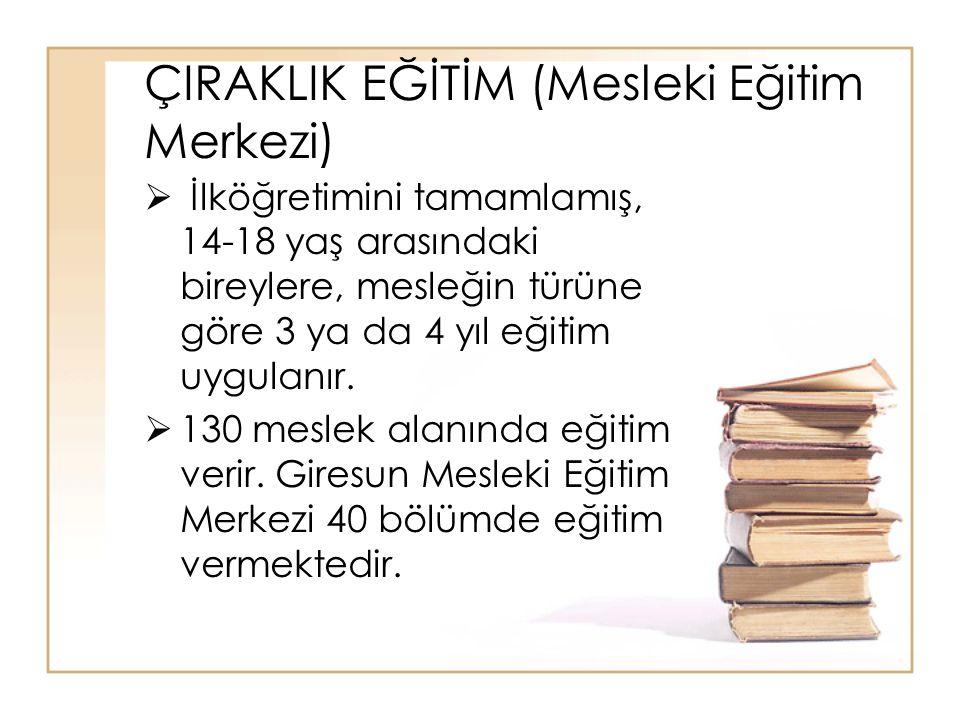 Meslek lisesi Anadolu Meslek Lisesi Teknik Lise Anadolu Teknik Lisesi