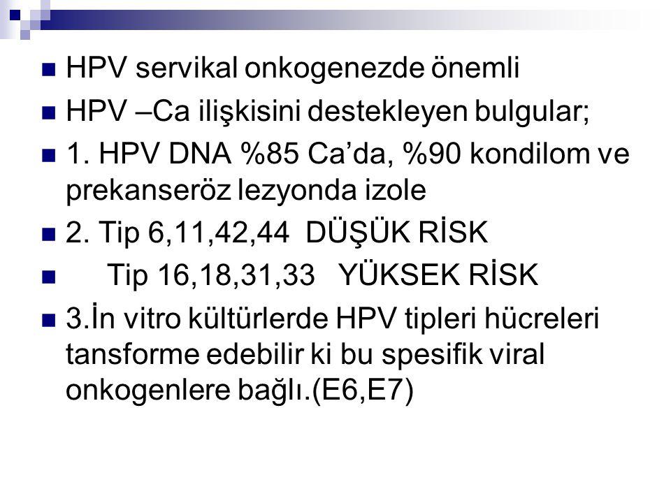 HPV servikal onkogenezde önemli HPV –Ca ilişkisini destekleyen bulgular; 1. HPV DNA %85 Ca'da, %90 kondilom ve prekanseröz lezyonda izole 2. Tip 6,11,