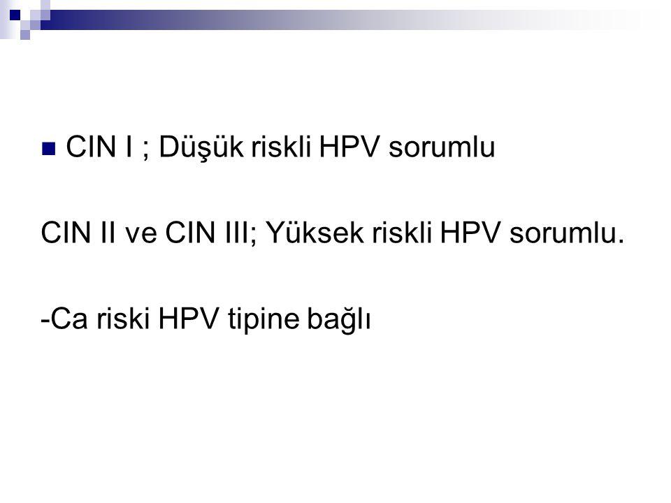 CIN I ; Düşük riskli HPV sorumlu CIN II ve CIN III; Yüksek riskli HPV sorumlu. -Ca riski HPV tipine bağlı