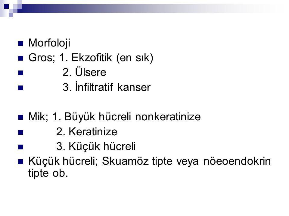 Morfoloji Gros; 1. Ekzofitik (en sık) 2. Ülsere 3. İnfiltratif kanser Mik; 1. Büyük hücreli nonkeratinize 2. Keratinize 3. Küçük hücreli Küçük hücreli