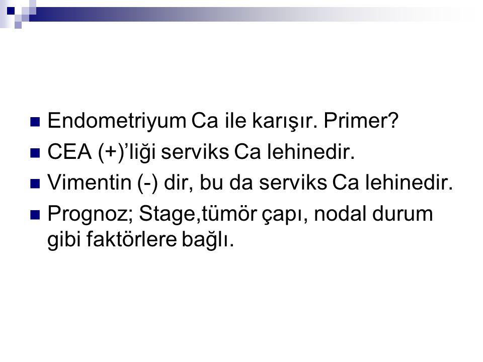 Endometriyum Ca ile karışır. Primer? CEA (+)'liği serviks Ca lehinedir. Vimentin (-) dir, bu da serviks Ca lehinedir. Prognoz; Stage,tümör çapı, nodal