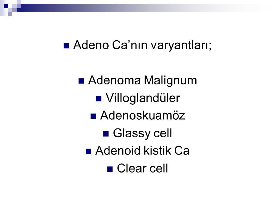 Adeno Ca'nın varyantları; Adenoma Malignum Villoglandüler Adenoskuamöz Glassy cell Adenoid kistik Ca Clear cell