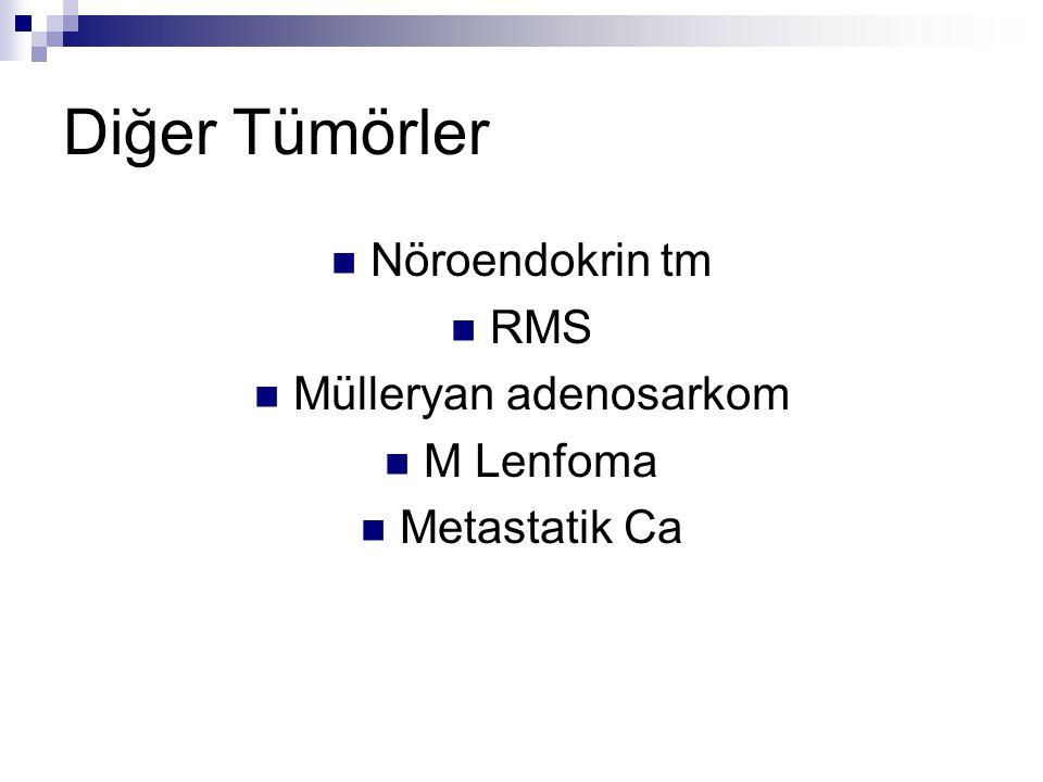 Diğer Tümörler Nöroendokrin tm RMS Mülleryan adenosarkom M Lenfoma Metastatik Ca