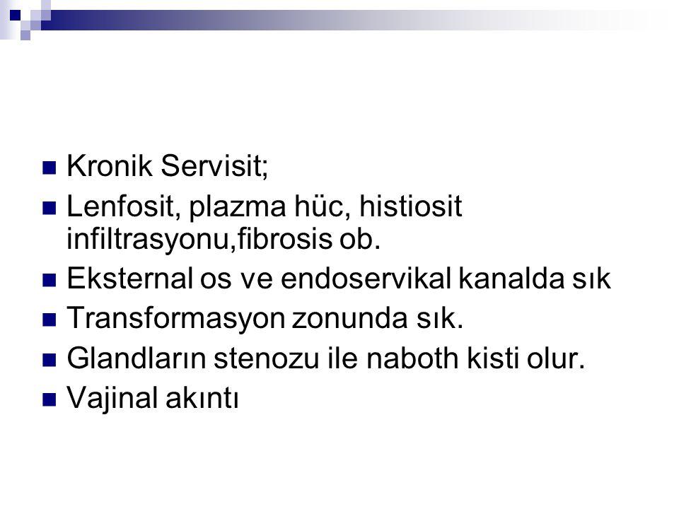 Kronik Servisit; Lenfosit, plazma hüc, histiosit infiltrasyonu,fibrosis ob. Eksternal os ve endoservikal kanalda sık Transformasyon zonunda sık. Gland