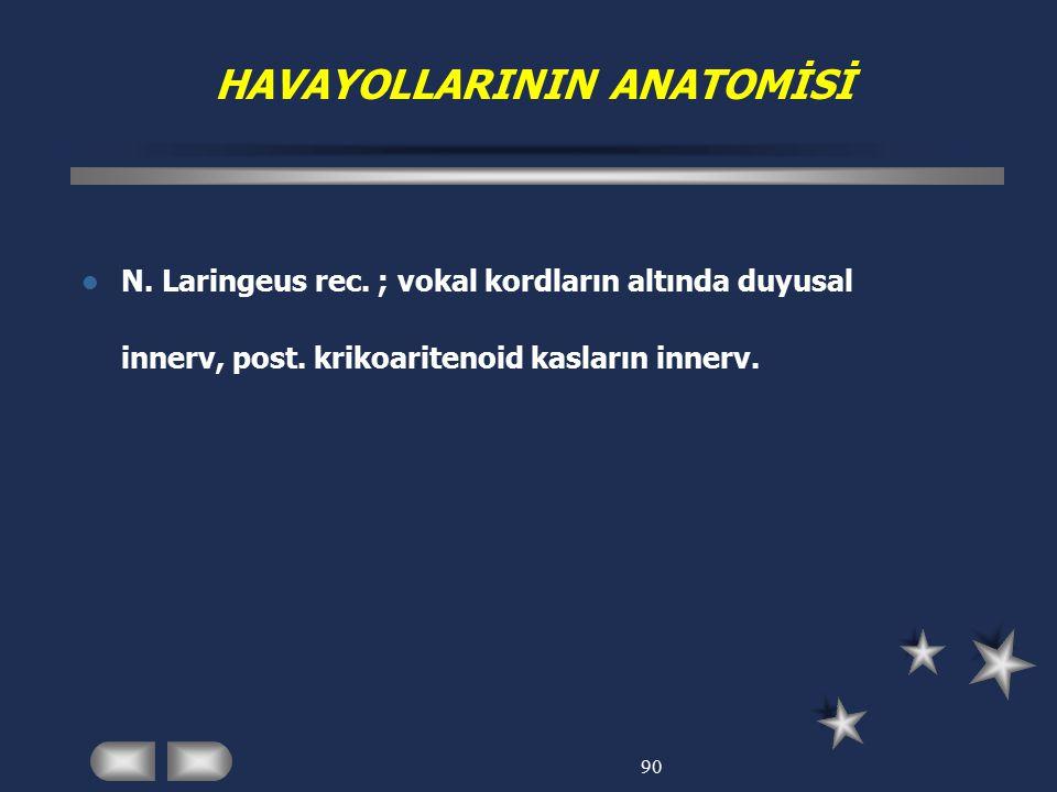 90 HAVAYOLLARININ ANATOMİSİ N. Laringeus rec. ; vokal kordların altında duyusal innerv, post. krikoaritenoid kasların innerv.